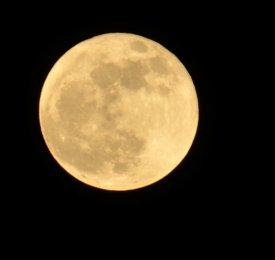 full moon en-wikipedia-org