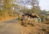 Ganeshpuri road