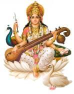 saraswati-rudraksha-ratna-com