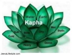 kapha-2