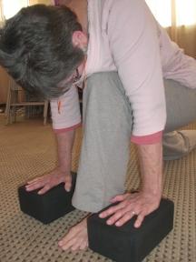 Lunge Yoga